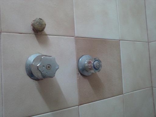 ゲストハウスのシャワー